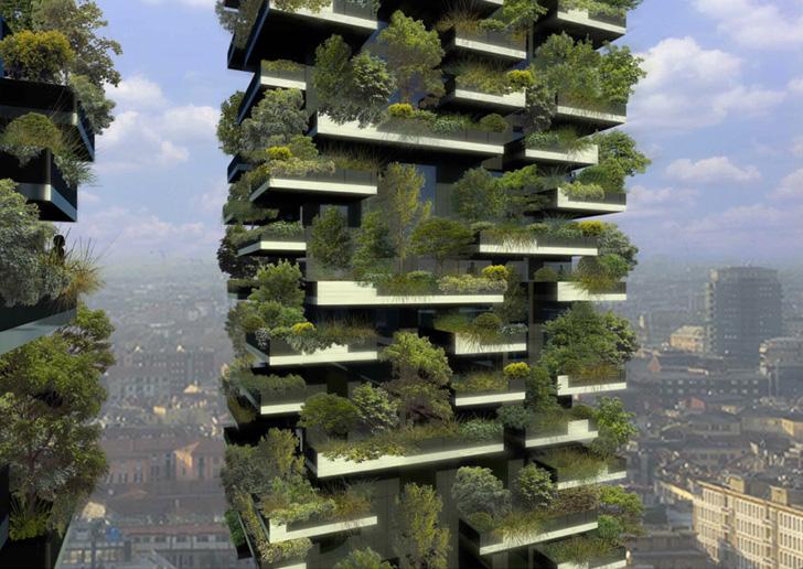"""Toți oamenii se opresc și se minunează când văd asta! Imagini incredibile cu """"Pădurea Verticală"""""""