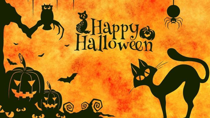 Surpriza pregătită de GOOGLE pentru români, de Halloween: Nimeni nu se aştepta!