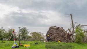 Un vânt puternic le-a smuls copacul din rădăcină! Când au văzut ce era îngropat acolo, au îngheţat!