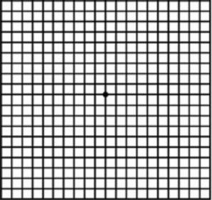 Cât de bine vezi? Acest test îţi spune pe loc dacă ai sau nu nevoie de ochelari