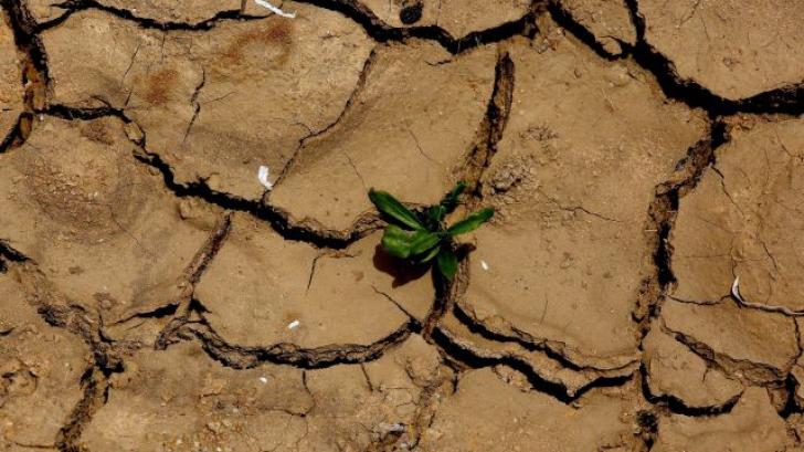 Secetă extremă în Portugalia