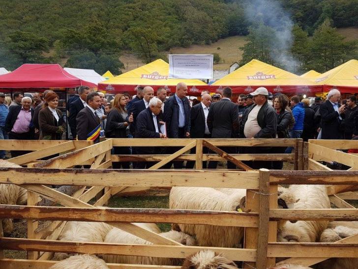 Petre Daea anunţă că dă porci gratis anumitor fermieri. Care sunt condiţiile
