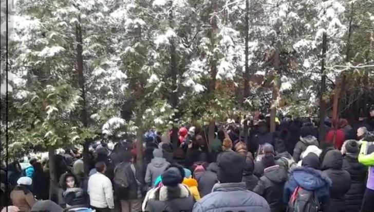 Exod la mormântul lui Arsenie Boca: puhoi de lume la Prislop (VIDEO)