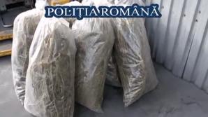 Poliția Română a distrus peste o tonă de droguri