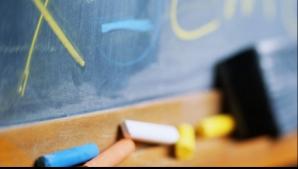 Elev de clasa a opta, din Teleorman, REŢINUT după ce şi-a agresat profesoara