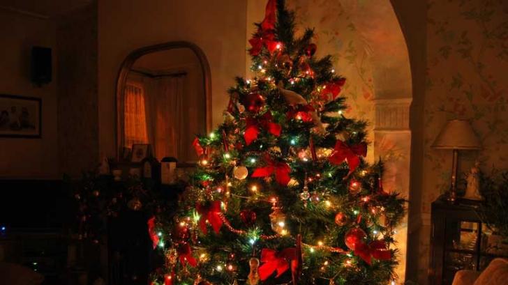 Când se împodobeşte, de fapt, bradul de Crăciun. Multă lume nu ştie şi face o mare greşeala