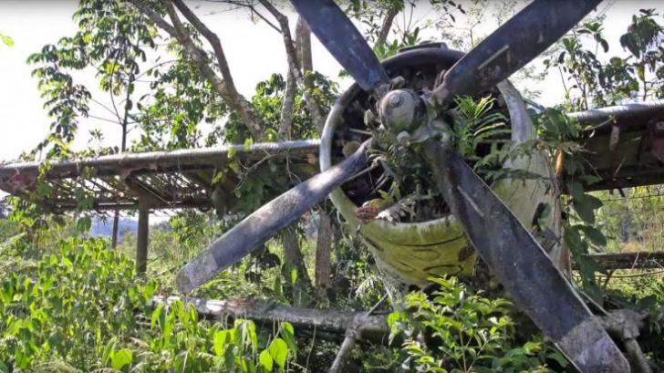 Fata de 17 ani a fost unica supraviețuitoare a catastrofei aviatice