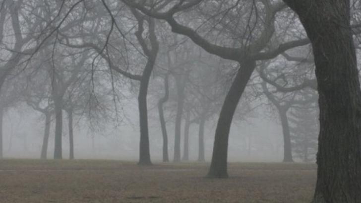ALERTĂ METEO. Cod GALBEN de ceaţă şi vânt puternic