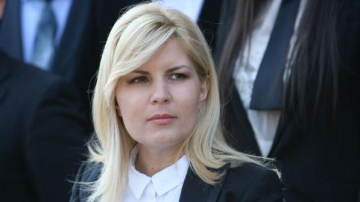 Jurnalistul Dan Andronic şi Elena Udrea, trimişi în judecată de DNA