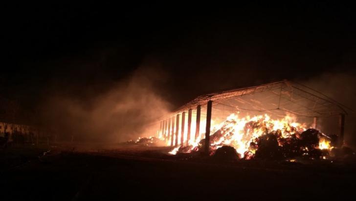 Incendiu violent la Herghelia din Mangalia