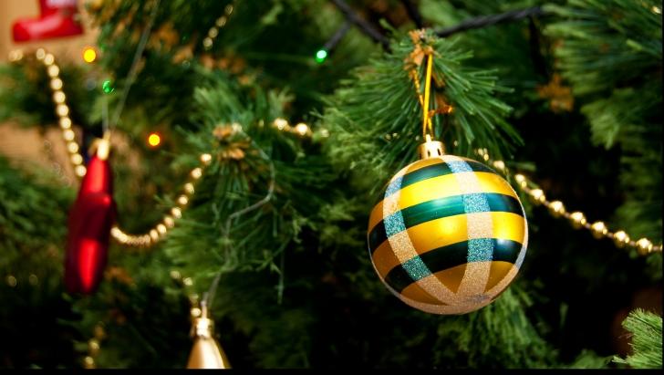 Sfaturi privind bradul de Crăciun