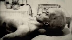 Autopsia unui extraterestru