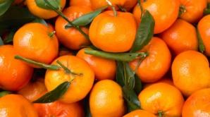 Motivul incredibil pentru care clementinele sunt mai căutate decât mandarinele şi portocalele