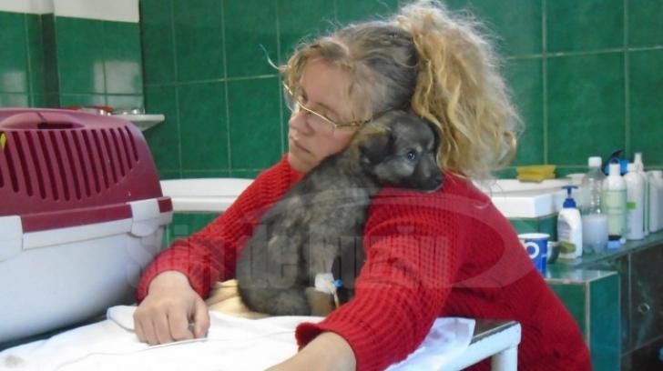 Datorie uriașă a unei românce către o clinică veterinară. Cum a ajuns în această situație