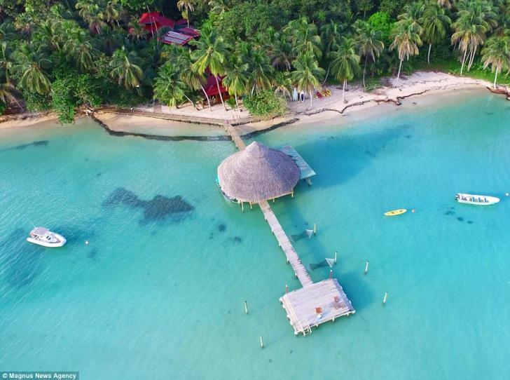 Paradis VÂNDUT cu 10 dolari, într-un concurs DESCHIS. Pe lângă insulă, primeşti 50.000 de dolari