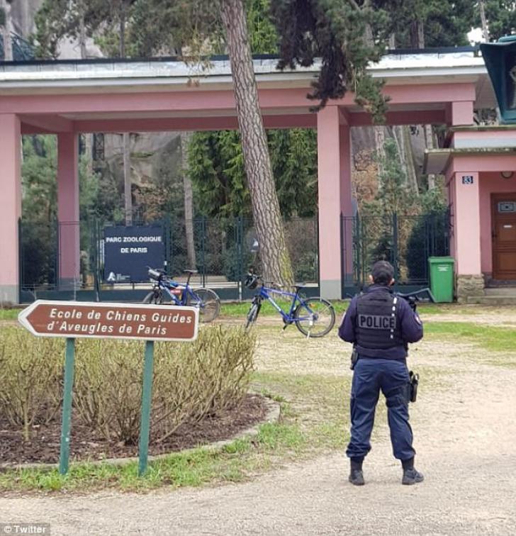 Grădina zoologică din Paris, EVACUATĂ, după ce 52 de maimuţe au fugit