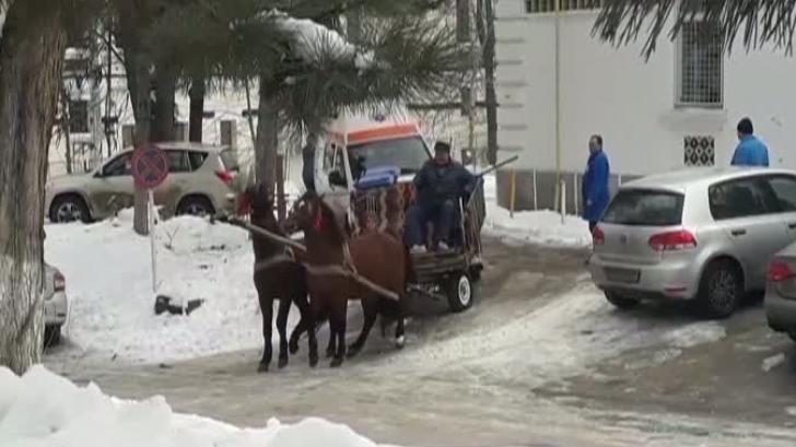Ambulanţă trasă de cai. Imagini inedite la Institutul de Psihiatrie Socola