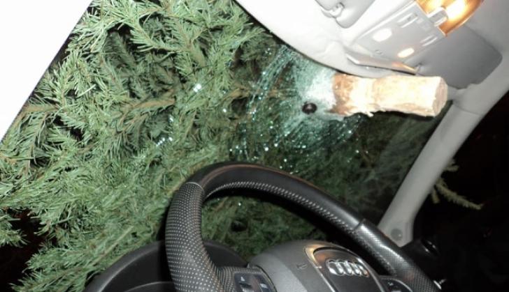 Nesimțire fără margini! Și-a aruncat bradul de la geam și a avariat o mașină. Putea fi o tragedie