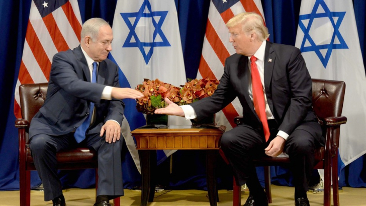 Lelia Munteanu: Bibi & Donald la Davos