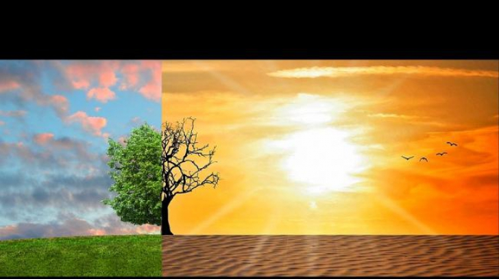 Temperaturi de primăvară pentru ianuarie. Cauza? Omul și industria, la baza schimbărilor climatice