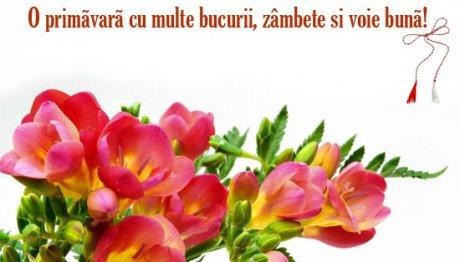 Felicitări 1 Martie Cele Mai Frumoase Felicitări Mesaje