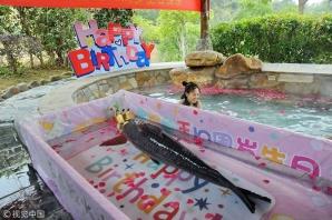 Se întâmplă în China: petrecere pentru un crap care a împlinit 10 ani