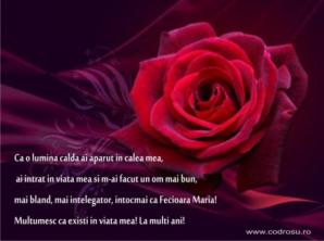 Felicitări Valentines Days