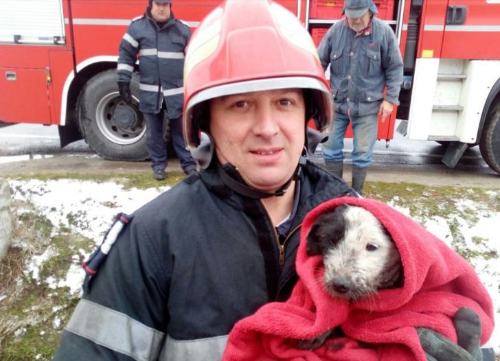 Pompieri cu inimă mare: au salvat un căţel de la o moarte sigură