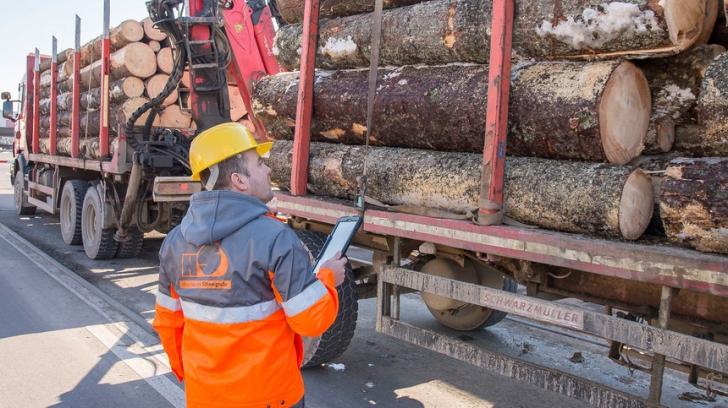 Holzindustrie Schweighofer: 70 de camioane sosesc pe zi la fabricile noastre de cherestea (P)