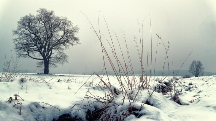 Ninsori și vreme mai rece decât ar fi normal în această perioadă. Prognoza de weekend