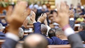 Vot în Parlament