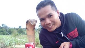 Muscat mortal de o cobra