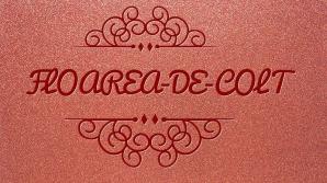 FLOAREA-DE-COLȚ