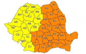 Ger siberian în România