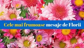 Mesaje de Florii 2018