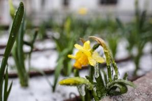 Ploaie îngheţată în Bucureşti. Imagini spectaculoase - Sursa FOTO: Inquam Photos / Octav Ganea