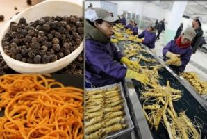 5 produse toxice din China, făcute din plastic şi cu pesticide, pe care şi tu le consumi