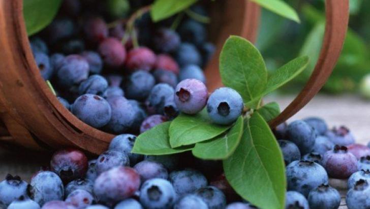 afinele ajută la pierderea grăsimii burta