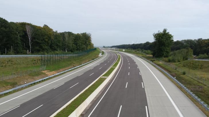 Migrația broaștelor a dus la închiderea mai multor drumuri din Germania