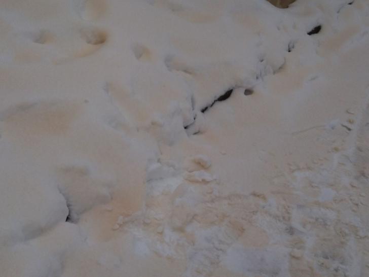 Fenomen neobişnuit în România: a nins cu zăpadă... portocalie