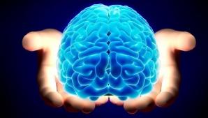 Creierul se poate micşora din cauza... stresului