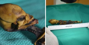 Au descoperit un mic schelet mumificat. Părea extraterestru. Ce era, de fapt. Rezultatul analizelor