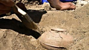 Au găsit o oală veche de 800 de ani, plină cu seminţe. Când au văzut ce a răsărit, au îngheţat!