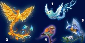 Alege o pasăre şi află ce-ţi rezervă această primăvară