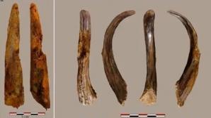 Descoperirea care ar putea rescrie istoria: unelte vechi de 90.000 de ani, găsite în Europa