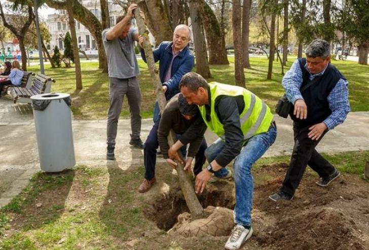 Emil Boc la plantat de copaci