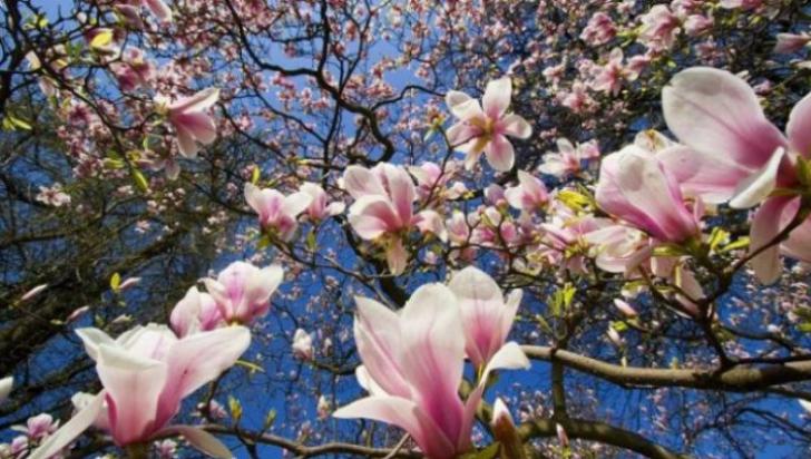 Vremea în Noaptea de Înviere şi în zilele de Paşte - avem nevoie de umbrelă?