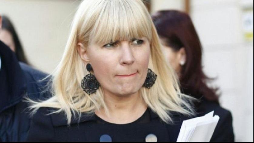Elena Udrea a sesizat Comisia de control SRI în dosarul Gala Bute