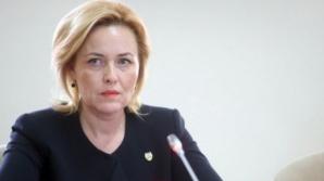 Carmen Dan, audiată în Comisia de apărare