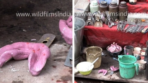 """Cum arată """"cabinetul"""" unui medic stomatolog din India. Imaginile sunt de coşmar!"""